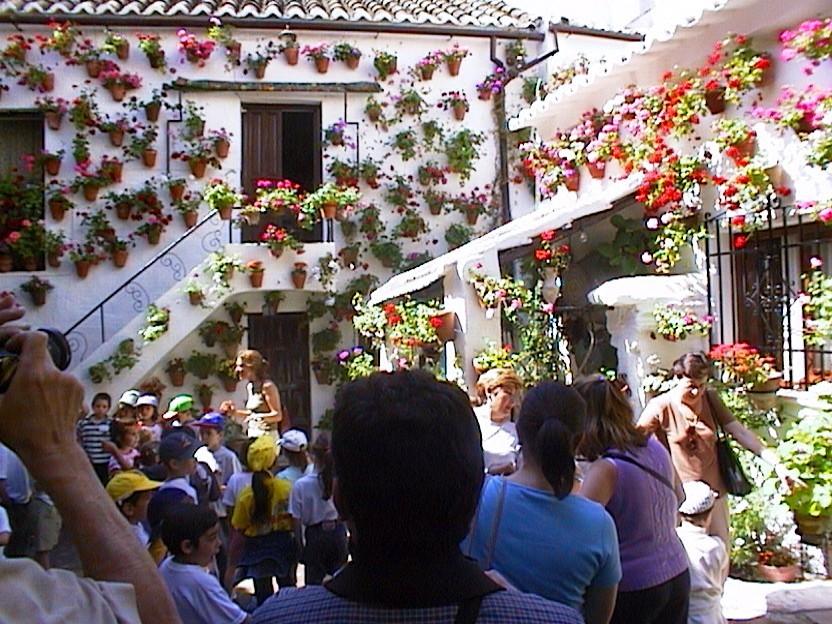 Mayo, Córdoba en fiestas