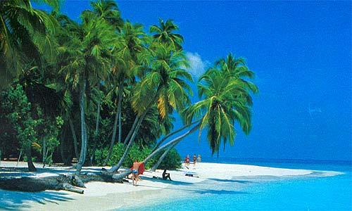 Ecoturismo en el Caribe Mexicano