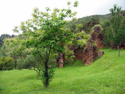 Cantabria, historia y naturaleza