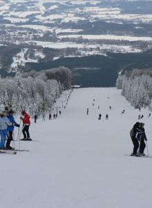 Navidades blancas, disfruta del esquí al mejor precio