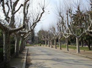 Zonas menos turísticas de Barcelona I