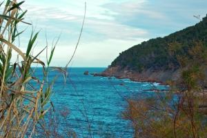 Un verano en las islas españolas