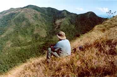 El auge del ecoturismo