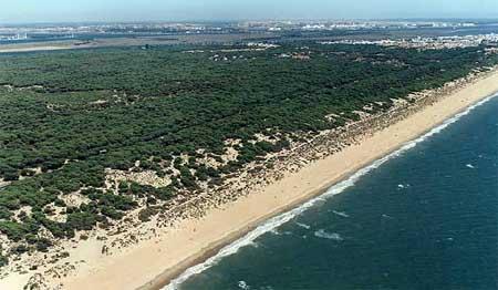 Punta Umbría y sus playas. Un lugar para visitar este verano