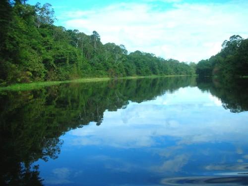 Dos lugares para disfrutar de la naturaleza en Brasil