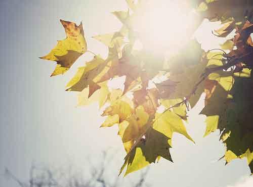 Fines de semana baratos en otoño