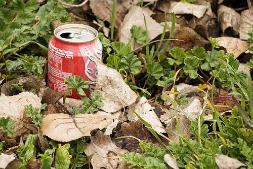 Cómo manejar los desperdicios en una excursión rural