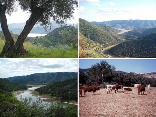 Ecoturismo rural en Obejo