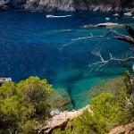 Los Caminos de Ronda de la Costa Brava. Pirineo Catalán