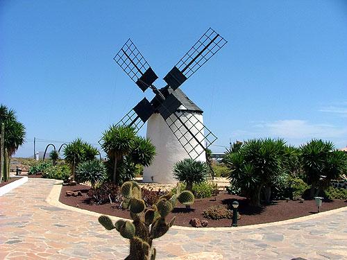 Vacaciones a Fuerteventura. Canarias