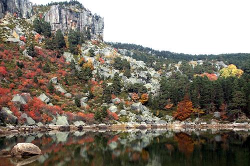 La comarca de Pinares en Soria: un reducto de paz