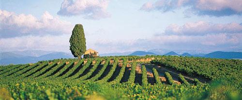 Languedoc-Rosellón, el sol de Francia (III) – El legado romano