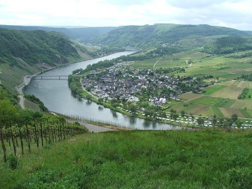 Valle del río Mosela, Luxemburgo. Valle del vino