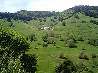 Selva Negra, Alemania. I